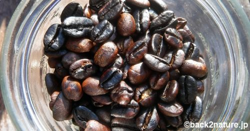 コーヒーの生豆をフライパンで焙煎してみた、その後